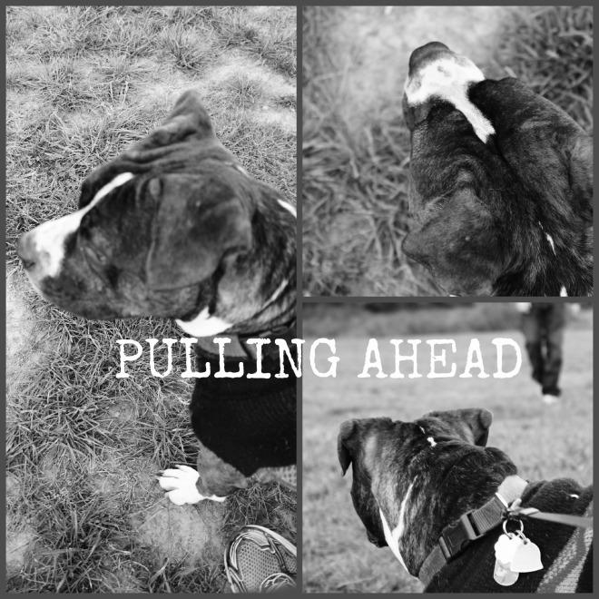 PULLING AHEAD